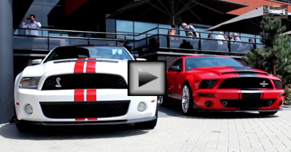 1000HP Mustang Shelby GT500 Super Snake american muscle car