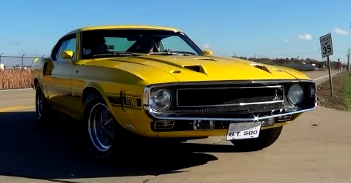 1969 ford mustang shelby gt500 super cobra jet muscle car