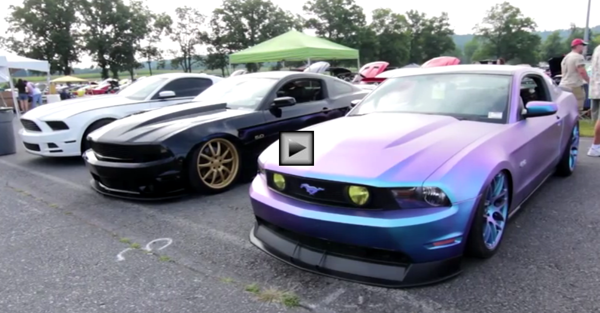 THE 2014 MUSTANG SHOW BY AMERICAN MUSCLE