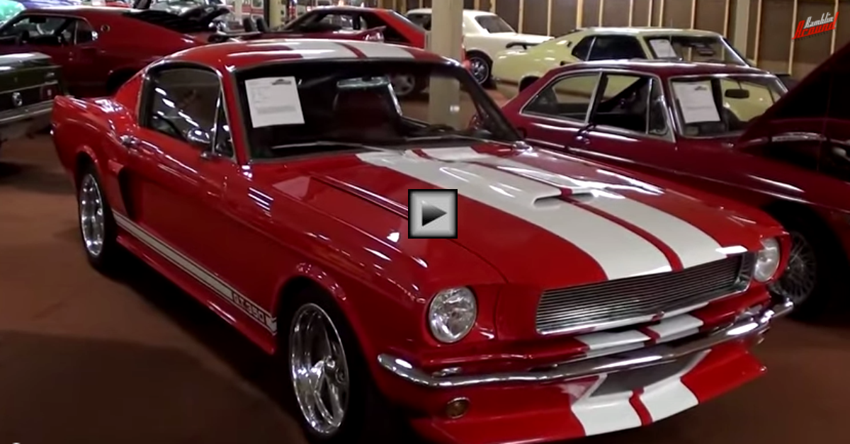 1966 ford mustang fastback shelby gt350 clone