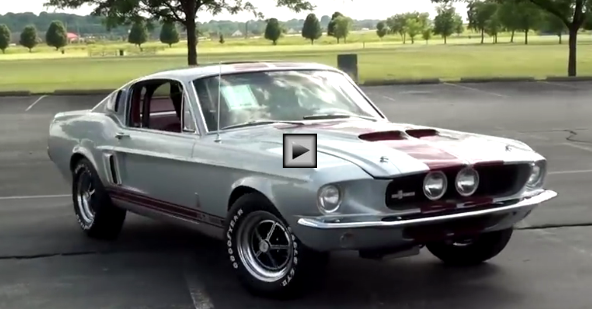 1967 ford mustang fastback s-code shelby gt500 tribute