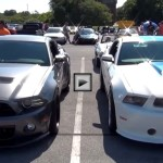 ford shelby mustang muscle cars