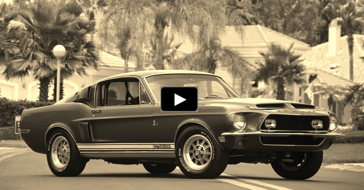1968 ford mustang shelby gt50kr vintage test drive and review