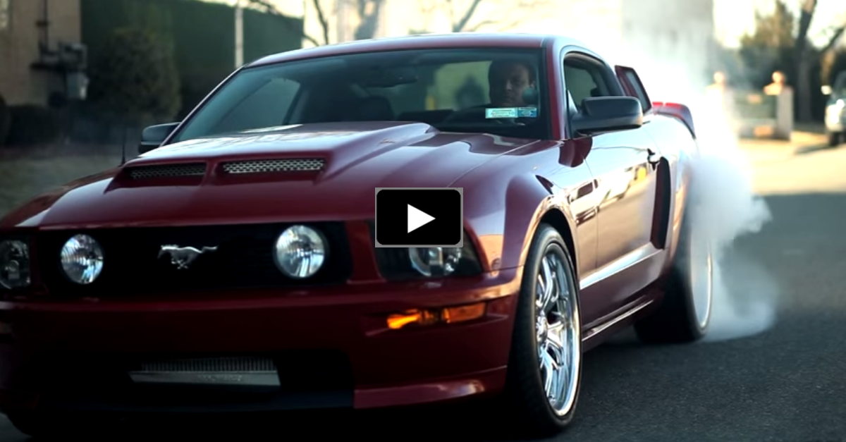 procharged ford mustang gt california special