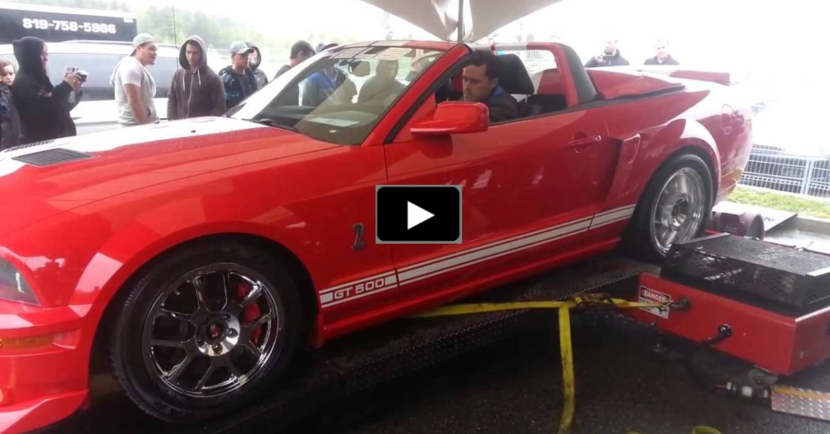 mustang shelby gt500 dyno