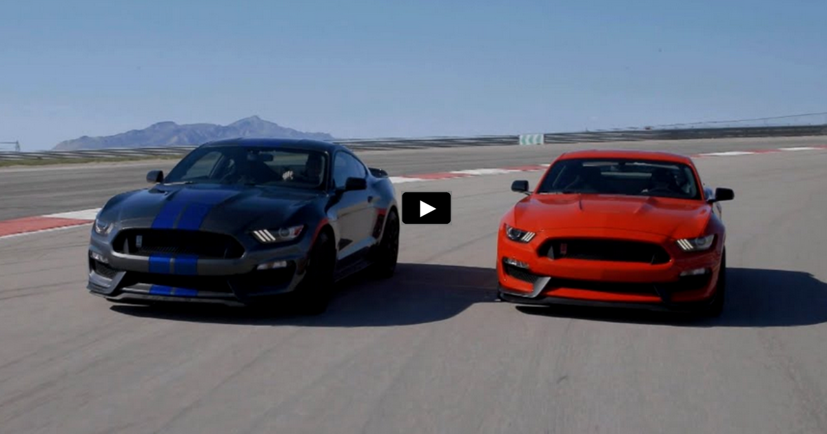 2016 shelby gt350 mustangs on the track