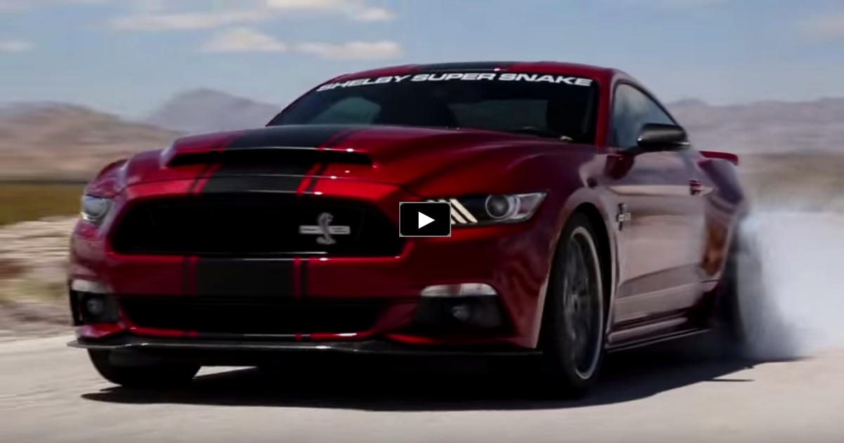 new 2015 mustang shelby super snake in action