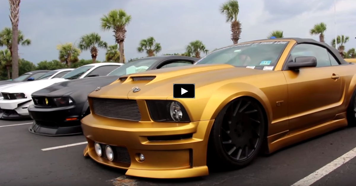 best custom mustangs 2015 mustang week