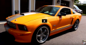 rare orange 2008 shelby mustang gt-c review
