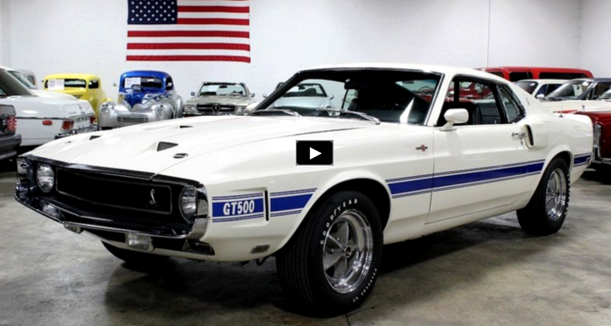 restored 1969 mustang shelby gt500