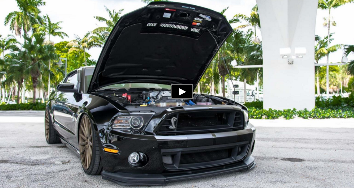 blacked out shelby super snake mustang on vossen wheels