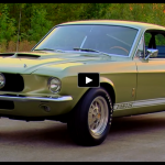 green_1967_shelby_gt350