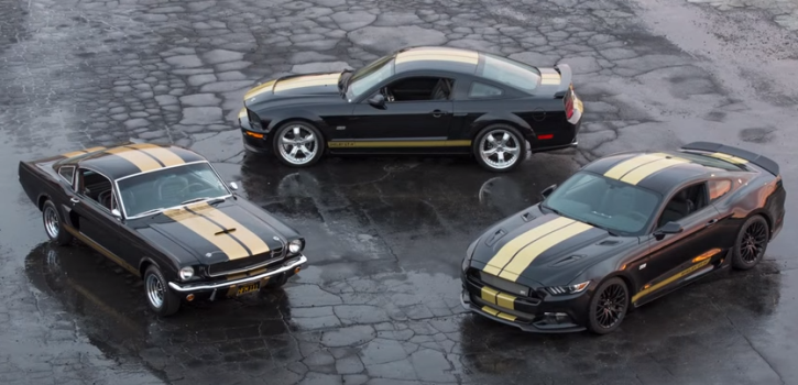 new shelby hertz mustang for rent