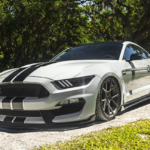 customized_2016_shelby_gt350