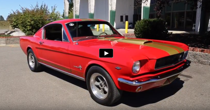 1965 mustang fastback shelby gt350 tribute video
