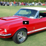 1967_shelby_gt500_collector_car