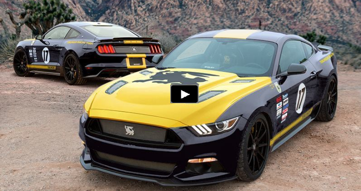all about the new shelby mustang terlingua edition
