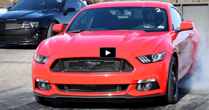 9 second 2016 mustang gt daily driver