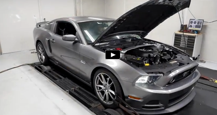 procharged 2014 mustang gt dyno