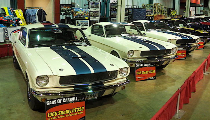 shelby gt350 gt500 mustangs and race cars