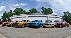 joe mcmurrey shelby collection