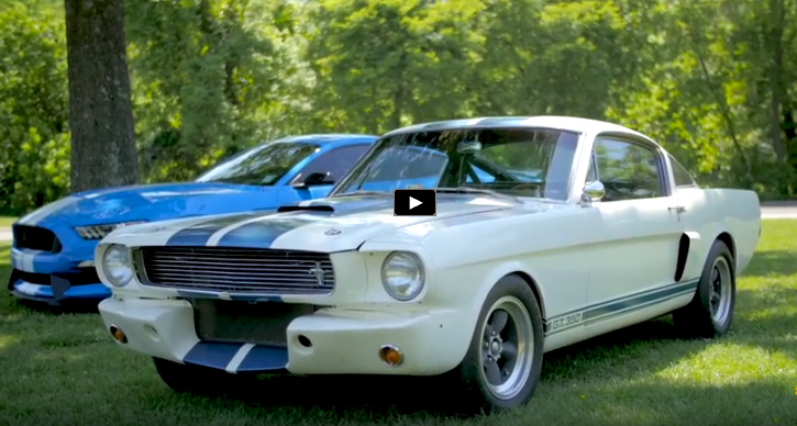 ford mustang shelby gt350 muscle cars
