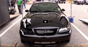 black cobra mustang import vs domestic