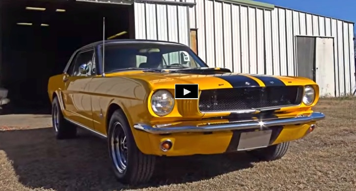1966 ford mustang bumblebee pony