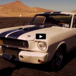 classic_shelby_mustangs