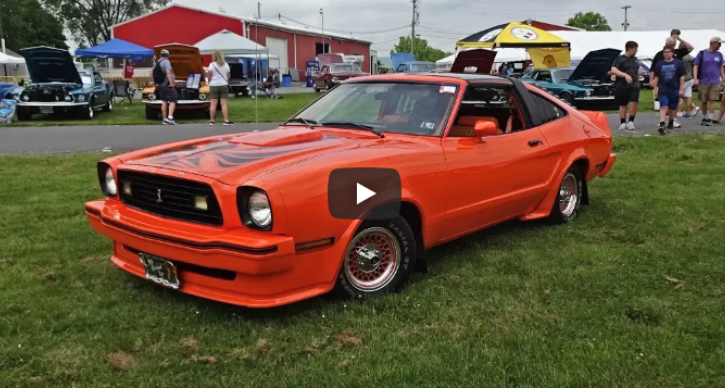 limited edition 1978 king cobra mustangs