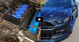 procharged 2015 mustang gt 5.0