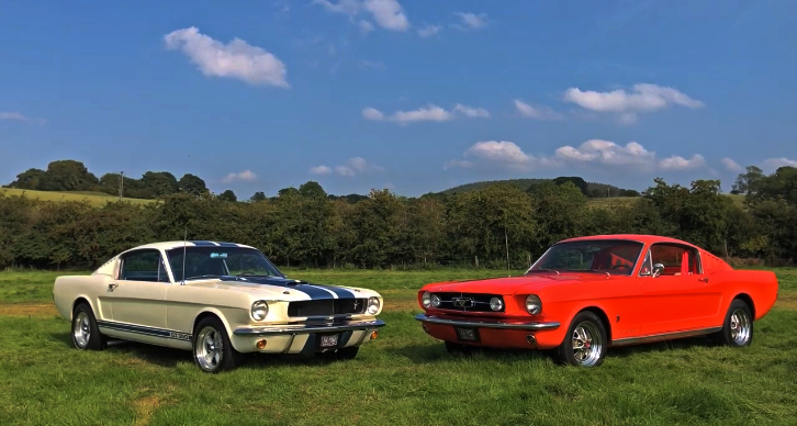 classic fastback mustangs video