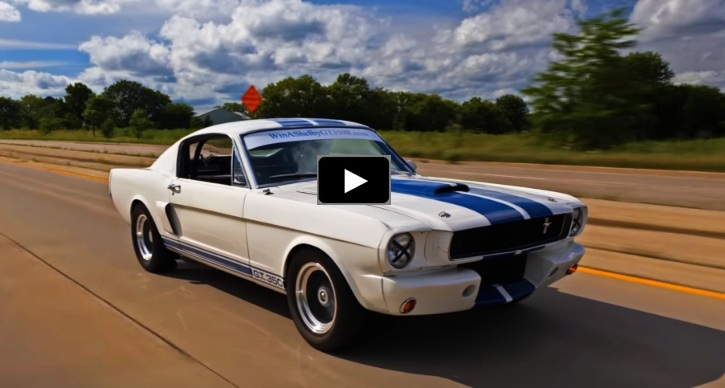 drive 1966 shelby gt350r
