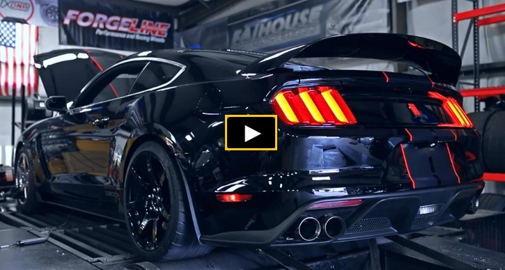 shelby gt350r mustang dyno video