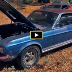 unrestored 1968 shelby gt500 kr mustang