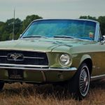 limited_edition_classic_mustangs