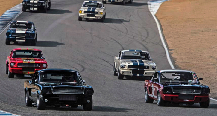 classic shelby gt350 cars parade